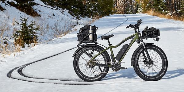 Rad Power Bikes RadRover Forest Green